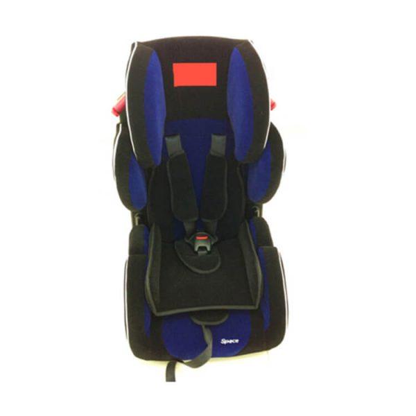 child car seat safety (1)