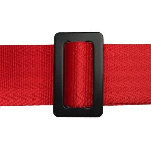 racing car seat belt (6)
