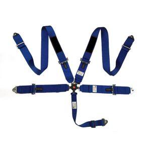 racing seat belt (1)