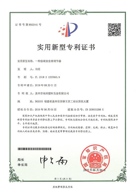 patent (6)